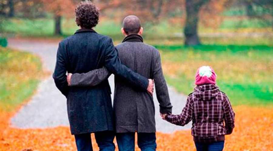 realidad de la adopción homoparental